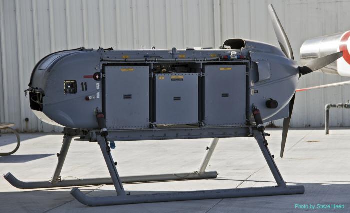CQ-10A (UAV) Snow Goose